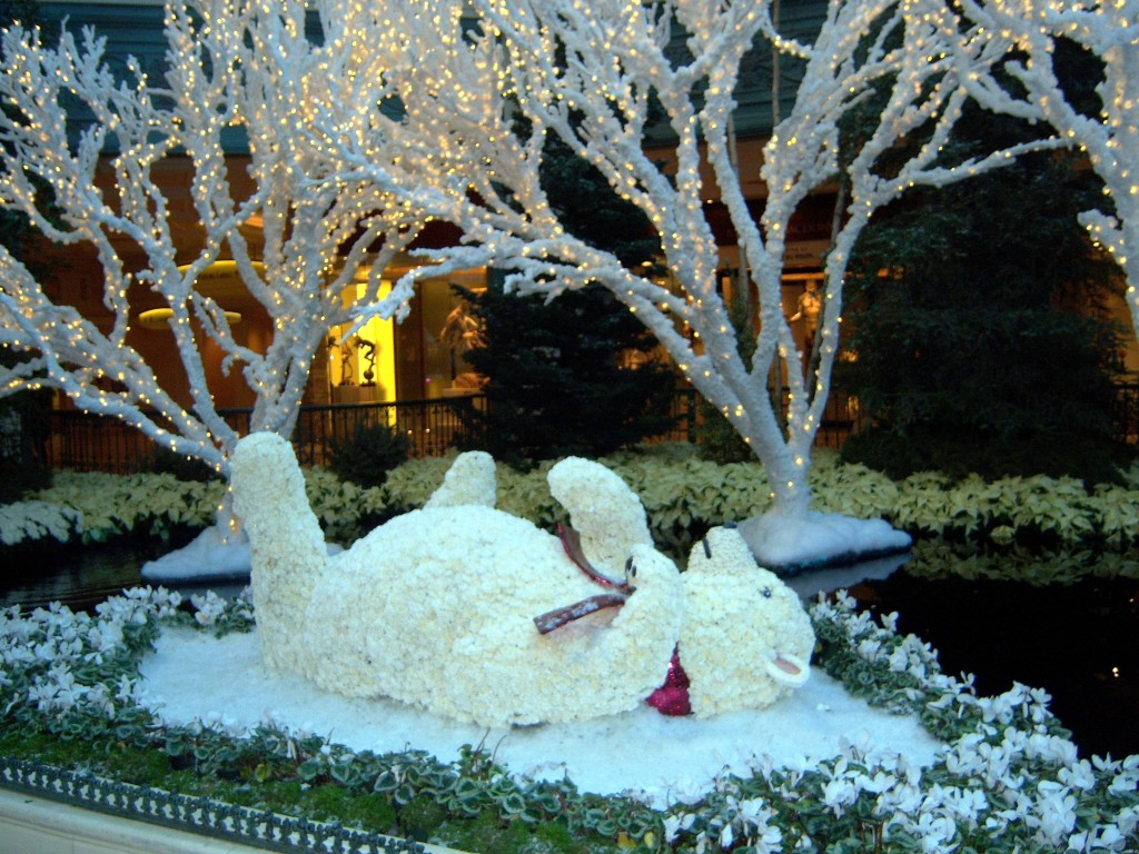 Bellagio Conservatory baby polar bear christmas Las Vegas nevada