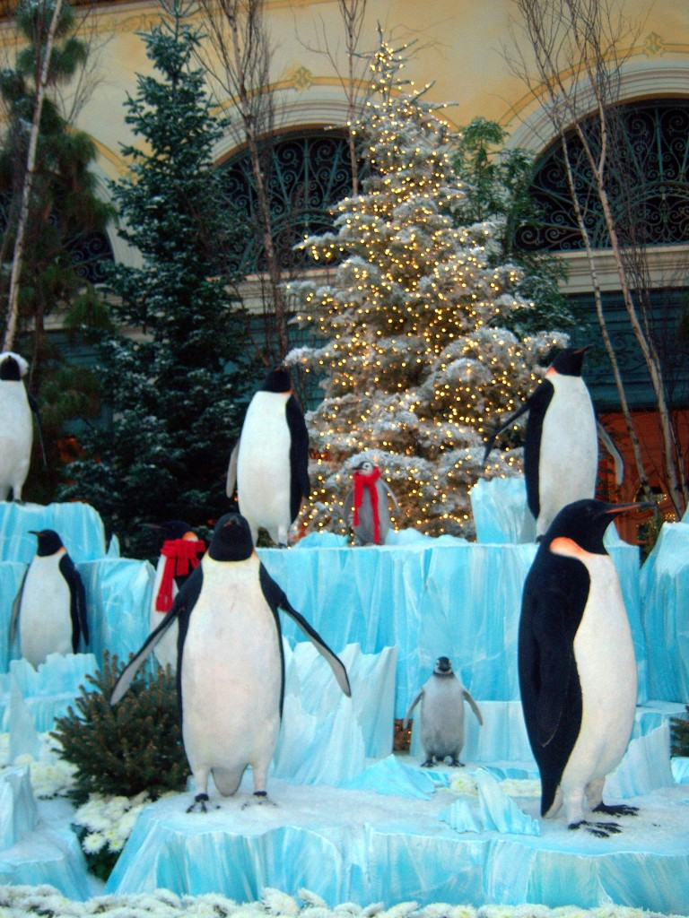 Bellagio conservatory penguins Chrismas Las Vegas Nevada