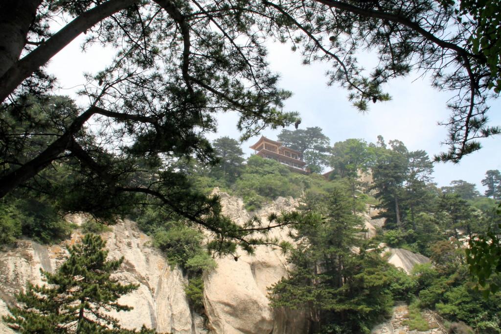 huashan tea house up top